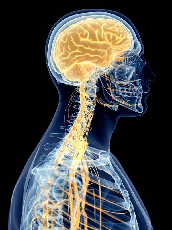 Migraine et céphalée de tension liés aux problèmes nuque